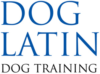 Dog Latin Dog Training