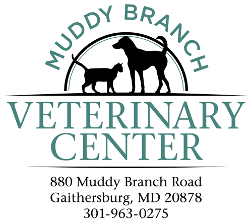 Muddy Branch Veterinary Center